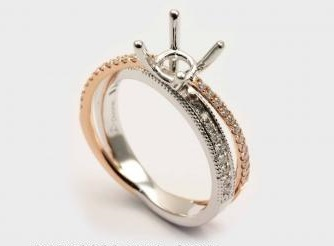 Ring Mounting by Orin